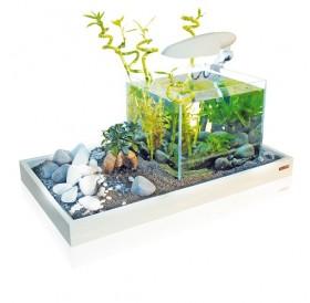 Croci Zen Artist Combi /аквариум с поставка за аквариум бяла/-50x43x7см