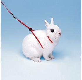 Ferplast Ny Rab /изложбен повод с нагръдник за заек/