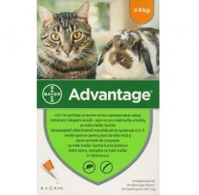 Bayer Advantage 40 Spot-On /Обезпаразитяващи Пипети За Външни Паразити При Котки И Декоративни Зайци До 4кг/-4бр