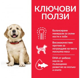 Hill's Science Plan™ Puppy Large Breed Chicken /Храна За Подрастващи Кученца Големи Породи/-14,5кг
