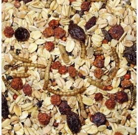 JR Farm Wild Bird Feast Without Shells /Храна За Диви Птички/-1,5кг