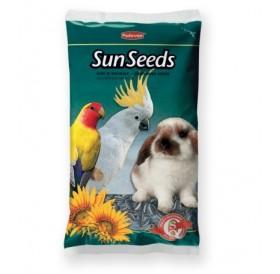 Padovan SunSeeds /Слънчогледово Семе/-500гр