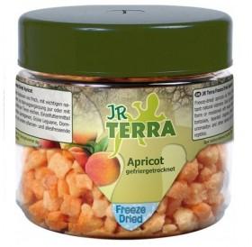 JR Terra Freeze Dried Apricot /индивидуална храна - изсушени кубчета кайсии/-20гр