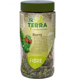 JR Terra Fibre Berry /индивидуална храна - изсушени листа от ягоди/-25гр