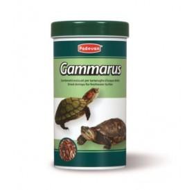 Padovan Gammarus /Храна За Водни Костенурки 250мл/-30гр