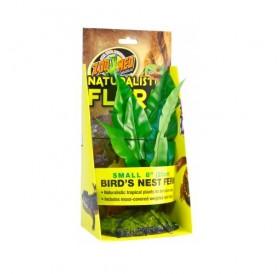 Zoo Med Naturalistic Flora Bird Nest Fern /терариумно растение с тежка основа и мъх/