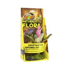 Zoo Med Naturalistic Flora Cryptаnihus Bromeliad /терариумно растение с тежка основа и мъх/