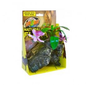 Zoo Med Orchid with Rock /терариумно растение с тежка основа/